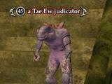 A Tae Ew judicator