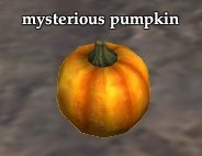Pumpkin shiny