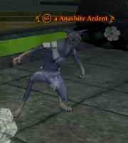 A Anashite Ardent