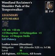 Woodland Reclaimer's Shoulder Pads of the Tempestwalker