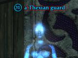 A Thexian guard (Nektropos Castle)