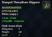 Tranquil Threadbare Slippers