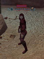 Vashyn T'Reyn