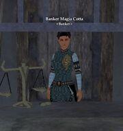 Banker Magia Cotta