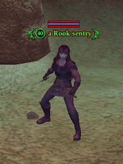 A Rook sentry