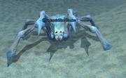 A crystalline hunter