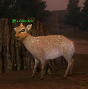 A valley deer