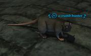 A crumb hunter