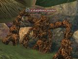 A sharpthorn prophet
