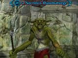 A Necrosis thaumaturge
