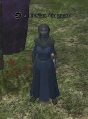 A Thexian Vin guard