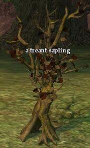 A treant sapling