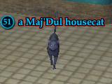 A Maj'Dul housecat