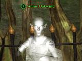 Anius Oakwind