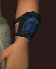 Arctic Frostwind Champion's Wristguard (Equipped).png