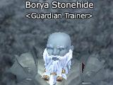 Borya Stonehide