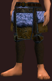 Frostwind Oracle's Pants (Equipped)