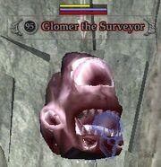 Glomer the Surveyor