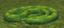 File:Race snake.jpg