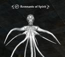 Remnants of Spirit
