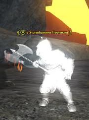 A Stormhammer lieutenant