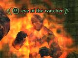 Eye of the watcher