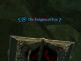 The Enigma of Fire