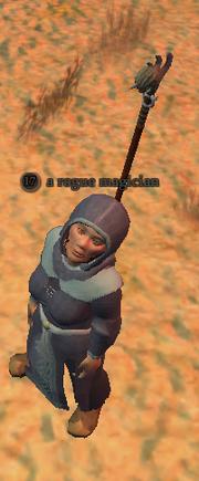 A rogue magician