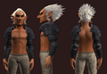 Archon's Pauldrons of the Citadel (Equipped).png