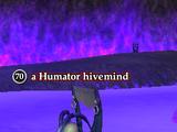 A Humator hivemind