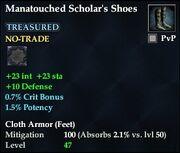Manatouched Scholar's Shoes