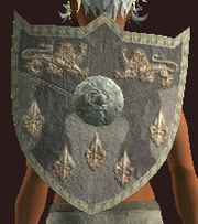 Ruby Flecked Kite Shield (Equipped)