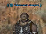 A Brokentusk champion