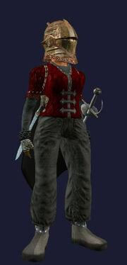Silvril vanguard barbute (worn)