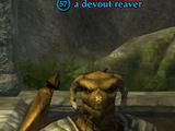 A devout reaver