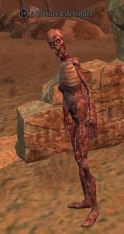 A tortured defender