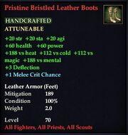 Pristine Bristled Leather Boots