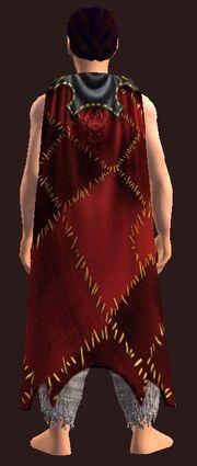The Corsair's Warmth worn