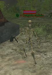 A Dragoon captain
