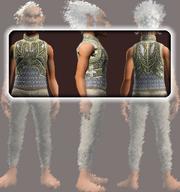 Spiritualist's Hauberk (Equipped)