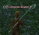 A brownie arcanist
