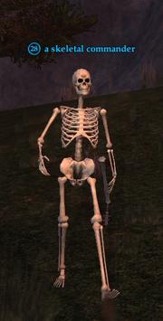 A skeletal commander
