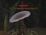 A zygomyd decay sower