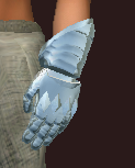 Polished parade gauntlets (Equipped)