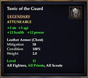 Tunic of the Guard