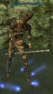 An Ara' Dal herald (Heroic)