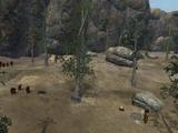Kamp Krulkiel