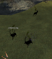 A shadowy stag (Cobalt Scar).png