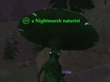 A Nightmarsh naturist