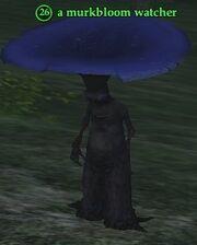 A murkbloom watcher